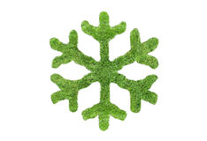 Green snowflake Royalty Free Stock Image