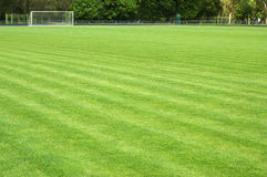 Green soccer field and goal Royalty Free Stock Images