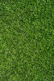 Green soccer field turf texture closeup Royalty Free Stock Photography