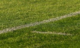 Green soccer football field Royalty Free Stock Photo