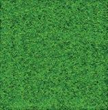 Green Soccer Grass. Field Vector Stock Photography