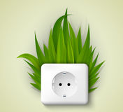 Green socket with grass. Royalty Free Stock Photos