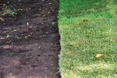 Green sod grass and brown earth Royalty Free Stock Photos