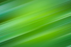 Green soft light abstract background Stock Image