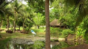 In green solar jungles of southeast Asia. Resort area with palm trees. Lake with boat. 4K.  stock video footage