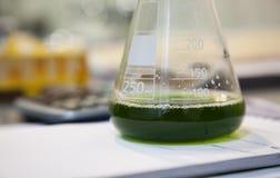 Green solution laboratory Royalty Free Stock Photo