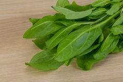 Green sorrel leaves. On the wood background stock photos