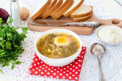 Green sorrel soup with egg in plate Stock Photo
