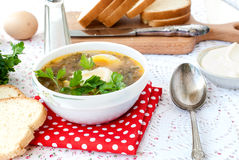 Green sorrel soup with egg in plate Stock Images