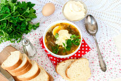Green sorrel soup with egg in plate Royalty Free Stock Images