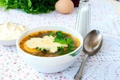 Green sorrel soup with egg in plate Stock Image