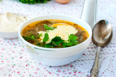 Green sorrel soup with egg in plate Stock Photography