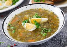 Green sorrel soup with eggs. Summer menu. Healthy food. Grey background royalty free stock photos