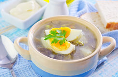 Green soup. With boiled egg royalty free stock photography