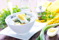 Green soup Royalty Free Stock Photography