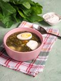Green soup in a bowl. Sorrel soup with eggs and leaves, onion, bread on a green table. Green soup in a bowl. Sorrel soup with eggs and leaves, onion, bread on a Stock Photography