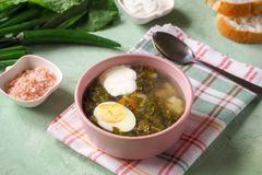 Green soup in a bowl. Sorrel soup with eggs and leaves, onion, bread on a green table. Green soup in a bowl. Sorrel soup with eggs and leaves, onion, bread on a Stock Images