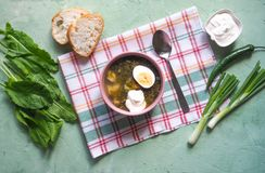 Green soup in a bowl. Sorrel soup with eggs and leaves, onion, bread on a green table. Green soup in a bowl. Sorrel soup with eggs and leaves, onion, bread on a Stock Photos