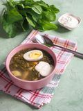 Green soup in a bowl. Sorrel soup with eggs and leaves, onion, bread on a green table. Green soup in a bowl. Sorrel soup with eggs and leaves, onion, bread on a Royalty Free Stock Photography