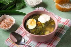 Green soup in a bowl. Sorrel soup with eggs and leaves, onion, bread on a green table. Green soup in a bowl. Sorrel soup with eggs and leaves, onion, bread on a Stock Image