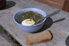Green soup with egg royalty free stock photography
