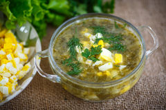 Green soup with eggs and sorrel. In a plate Stock Photos