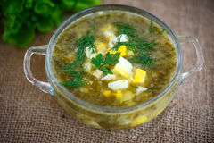Green soup with eggs and sorrel. In a plate Royalty Free Stock Images