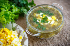 Green soup with eggs and sorrel. In a plate Stock Images