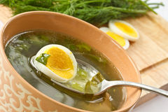 Green soup of sorrel. Soup in a cup stock photography