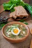 Green soup of sorrel Royalty Free Stock Photos