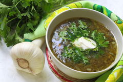 Green soup with sour cream Stock Image