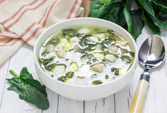 Green soup with spinach, meat, potato and egg (green borscht) Stock Images