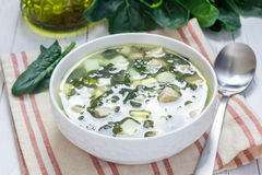 Green soup with spinach meat, potato and egg (green borscht) Stock Image