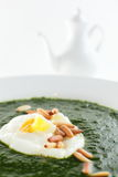 Green soup in white dish Stock Image