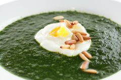 Green soup in white dish Stock Images
