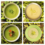 4 green soups Stock Images