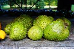 Green soursop fruit Royalty Free Stock Photo