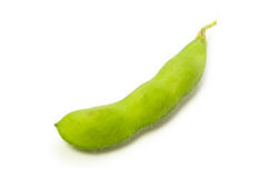Green soy bean Royalty Free Stock Photos