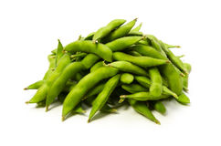 Green soy bean Stock Image