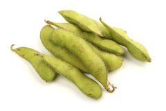 Green soy bean Royalty Free Stock Image