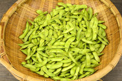 Green soy beans Stock Photography