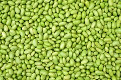 Green soy beans Stock Photo