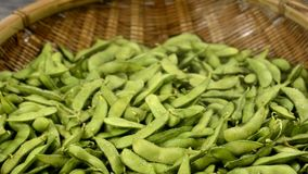 Green soy beans stock footage