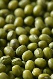 Green soya beans texture Royalty Free Stock Photography