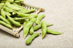 Green soybean Royalty Free Stock Photos