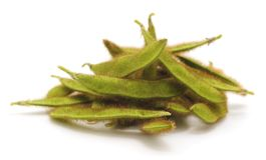 Green soybean pods. Stock Photo