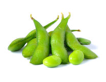 Green soybeans Stock Images