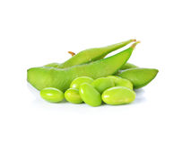 Green soybeans Royalty Free Stock Images