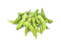 Green soybeans on white background. Royalty Free Stock Image