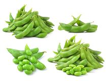 Green soybeans on white background Royalty Free Stock Photo